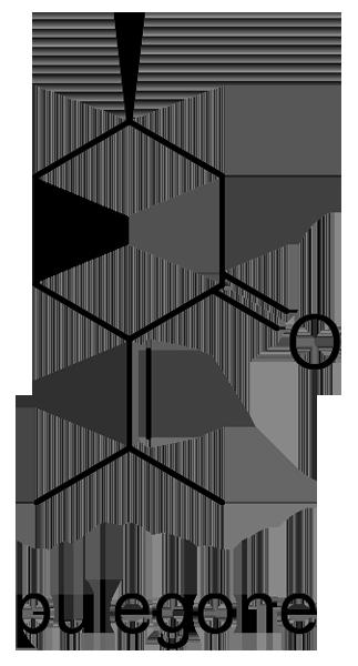 ハッカ 化学構造式3