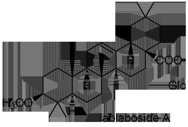 フジマメ 化学構造式2