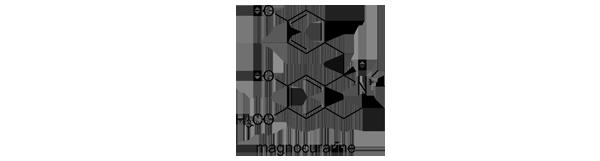 ホオノキ 化学構造式3