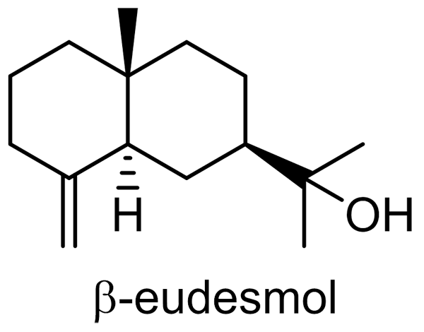 ホソバオケラ 化学構造式2