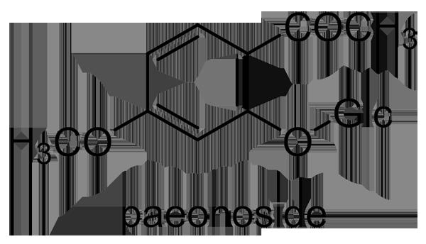 ボタン 化学構造式2