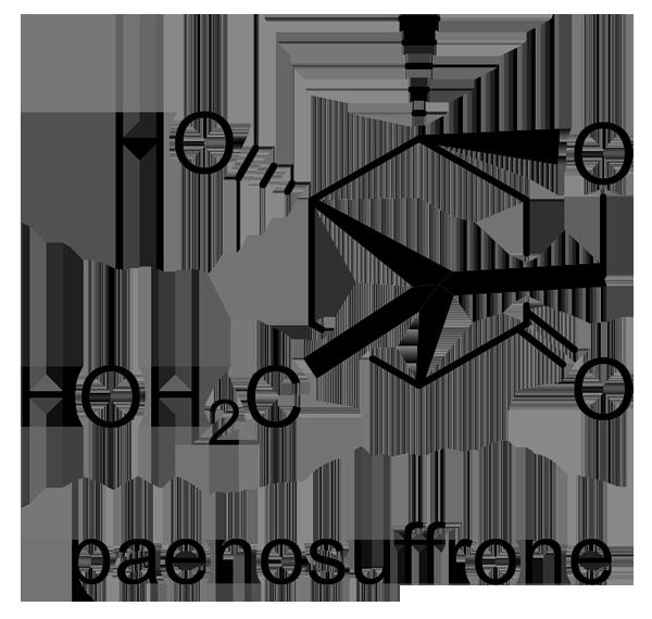 ボタン 化学構造式3
