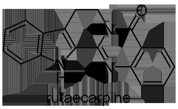 ホンゴシュユ 化学構造式2