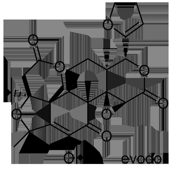 ホンゴシュユ 化学構造式3