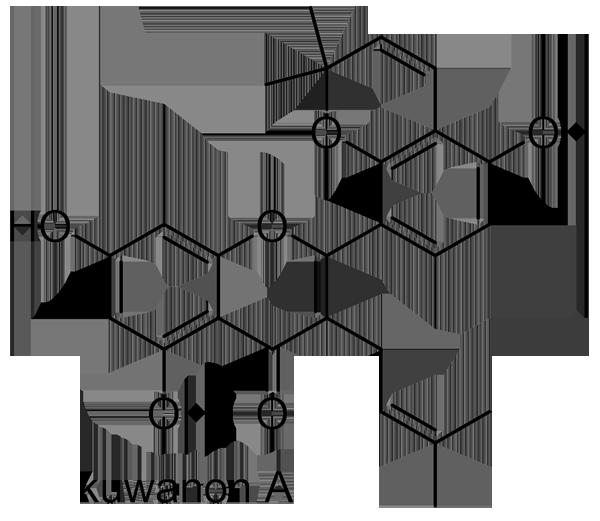 マグワ 化学構造式2