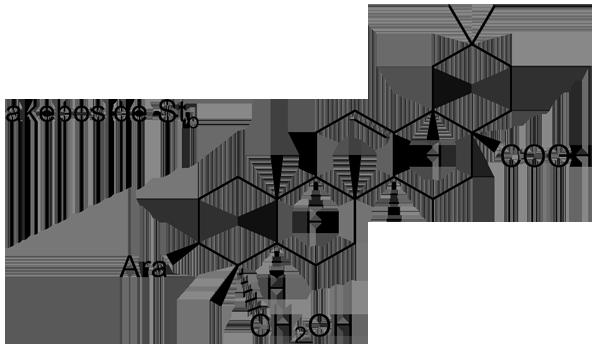 ミツバアケビ 化学構造式3