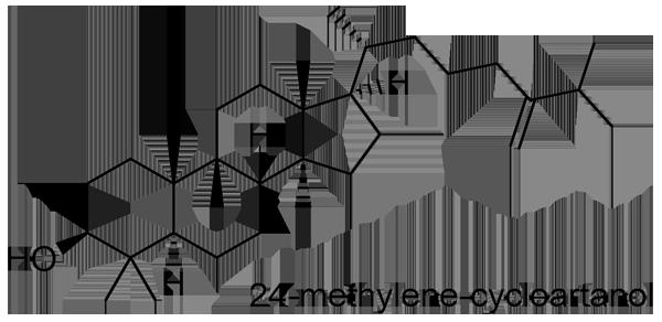 モモ 化学構造式3