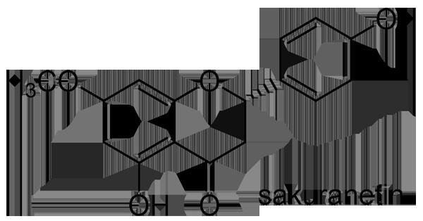 ヤマザクラ 化学構造式2
