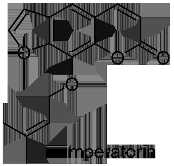 ヨロイグサ 化学構造式2