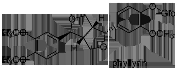 レンギョウ 化学構造式2