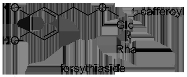レンギョウ 化学構造式3