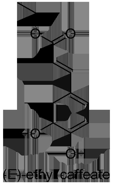 アサガオ 化学構造式2