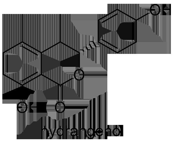 アマチャ 化学構造式2