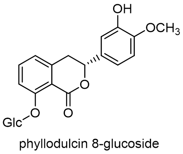 アマチャ 化学構造式3