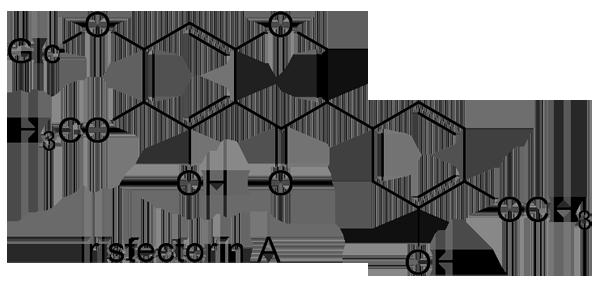 イチハツ 化学構造式2
