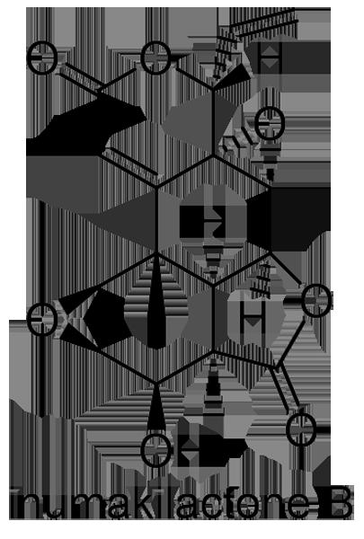 イヌマキ 化学構造式2