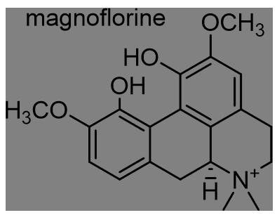 ウマノスズクサ 化学構造式3