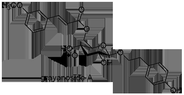 ウワミズザクラ 化学構造式2