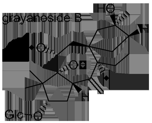 ウワミズザクラ 化学構造式3