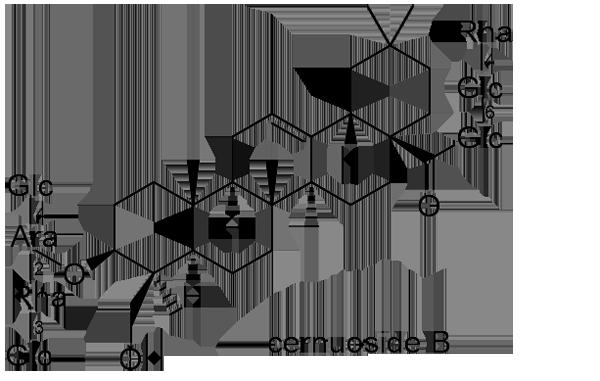 オキナグサ 化学構造式3