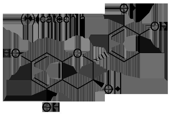 カガミグサ 化学構造式3
