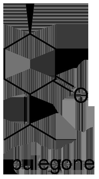 カキドオシ 化学構造式3