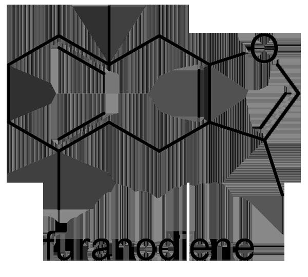 ガジュツ 化学構造式2
