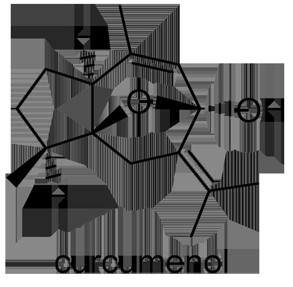 ガジュツ 化学構造式3