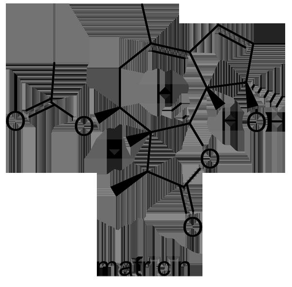 カミツレ 化学構造式2