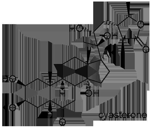 キランソウ 化学構造式2