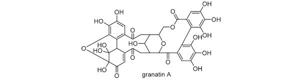 ザクロ 化学構造式2
