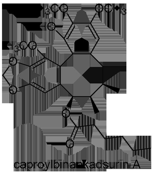 サネカズラ 化学構造式3