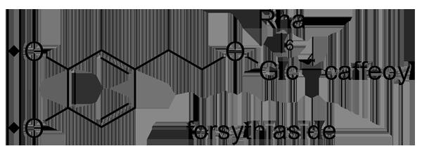 シナレンギョウ 化学構造式3