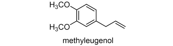 ショウブ 化学構造式2