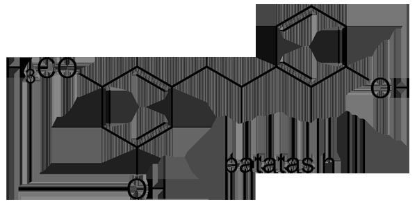 シラン 化学構造式3