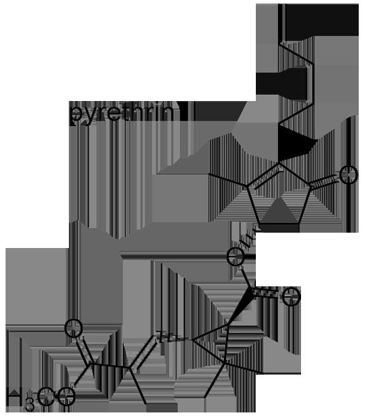 シロバナムシヨケギク 化学構造式2