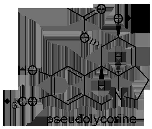 スイセン 化学構造式2