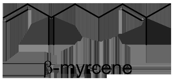 セリ 化学構造式3