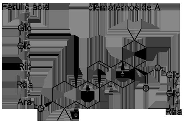 センニンソウ 化学構造式2