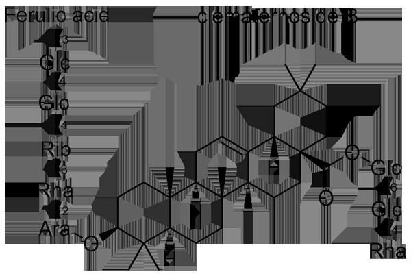 センニンソウ 化学構造式3
