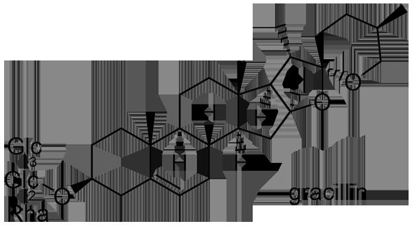 タチドコロ 化学構造式2