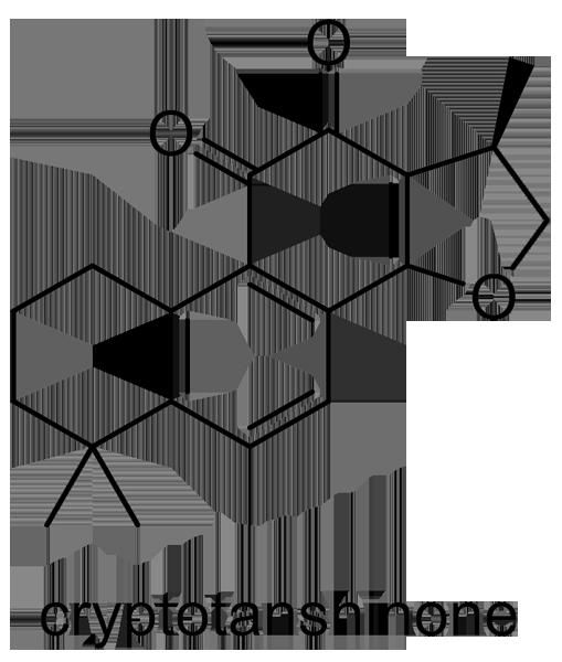 タンジン 化学構造式3
