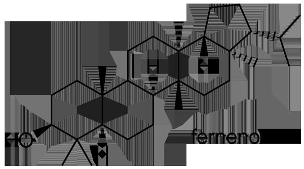 チガヤ 化学構造式3