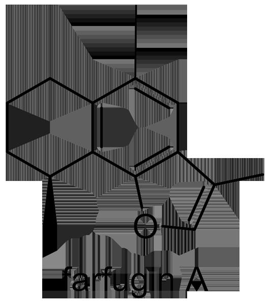ツワブキ 化学構造式2