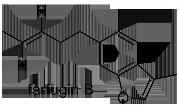ツワブキ 化学構造式3