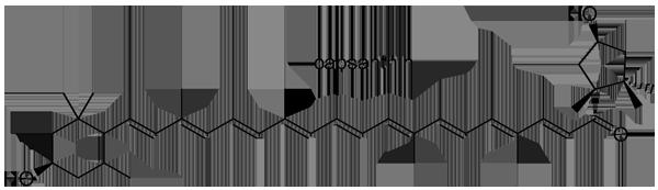 トウガラシ 化学構造式2