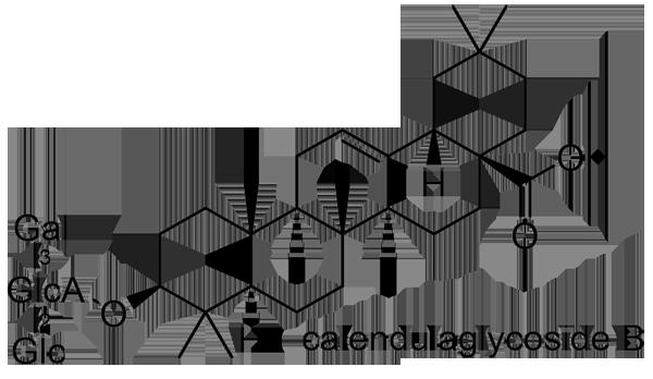 トウキンセンカ 化学構造式2
