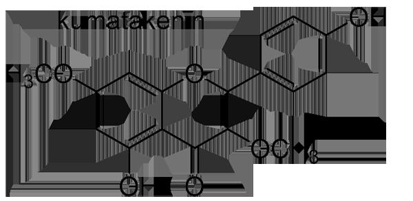 ナワシログミ 化学構造式2