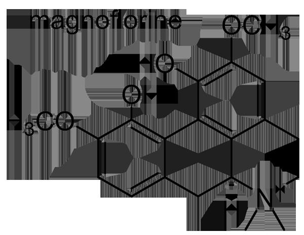 ナンテン 化学構造式3