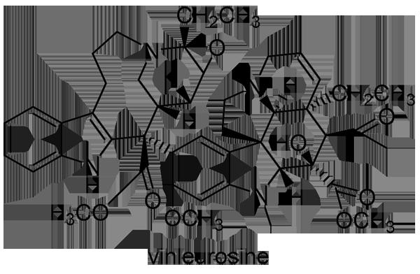 ニチニチソウ 化学構造式3